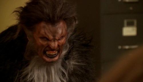 Teen Wolf Vampire-sun-werewolf-moon_image-buffy-werewolf