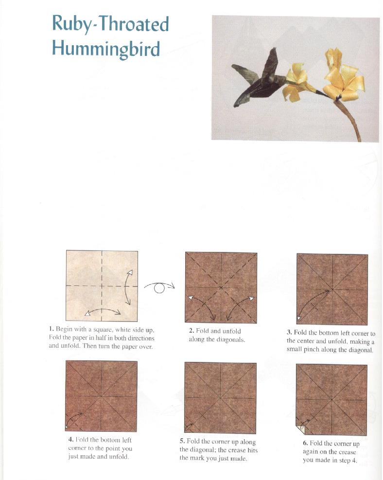 Ruby Throated Hummingbird Make Origami Easy Instructions For Kids