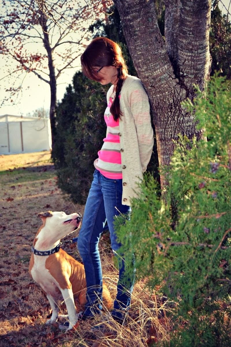 2014 Pet Blogger Challenge