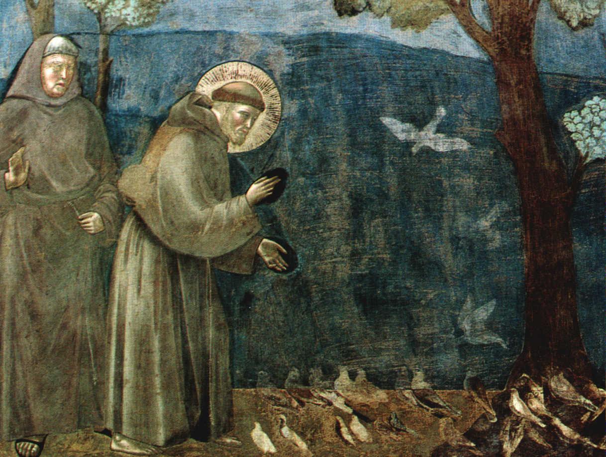 scrumpdillyicious assisi birthplace of francis santa clara