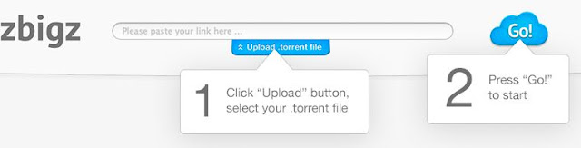 Donwload torrent files with idm