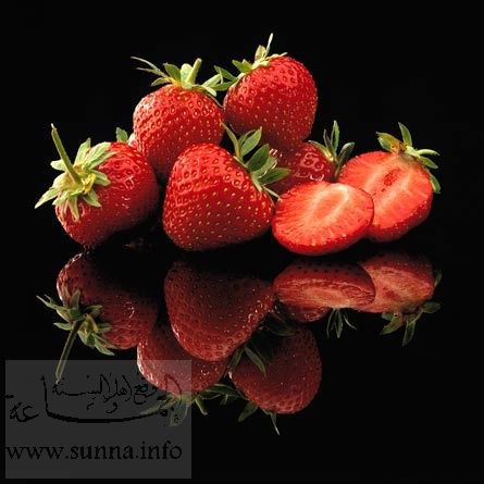 http://2.bp.blogspot.com/-BKmESlYpl2M/TaQHvTiEm_I/AAAAAAAAAG8/kLiOtxD_ecQ/s1600/fraise.jpg