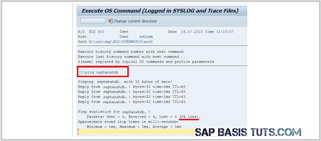 SAP HANA Ping test