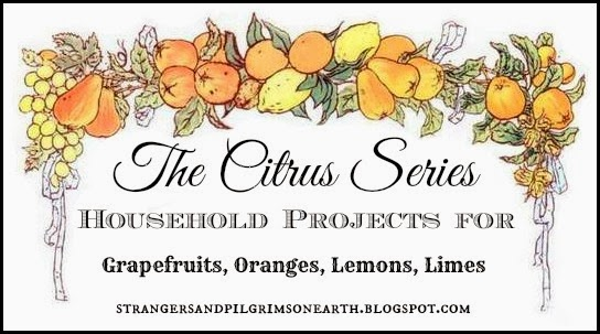 Household Projects Using Citrus Fruits