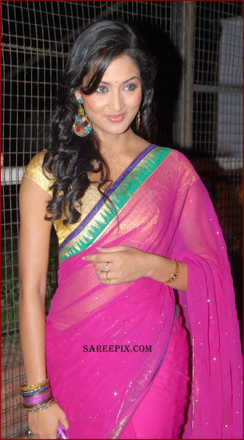 vidisha saree pics at Devaraya movie audio launch