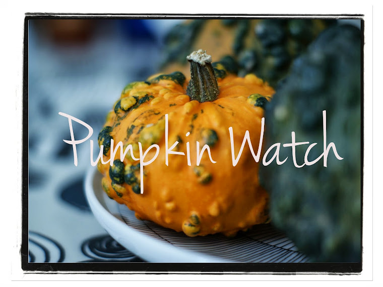 Pumpkin Watch