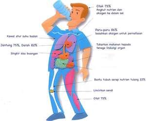 Berapa Nilai Lemak Tubuh yang Normal?