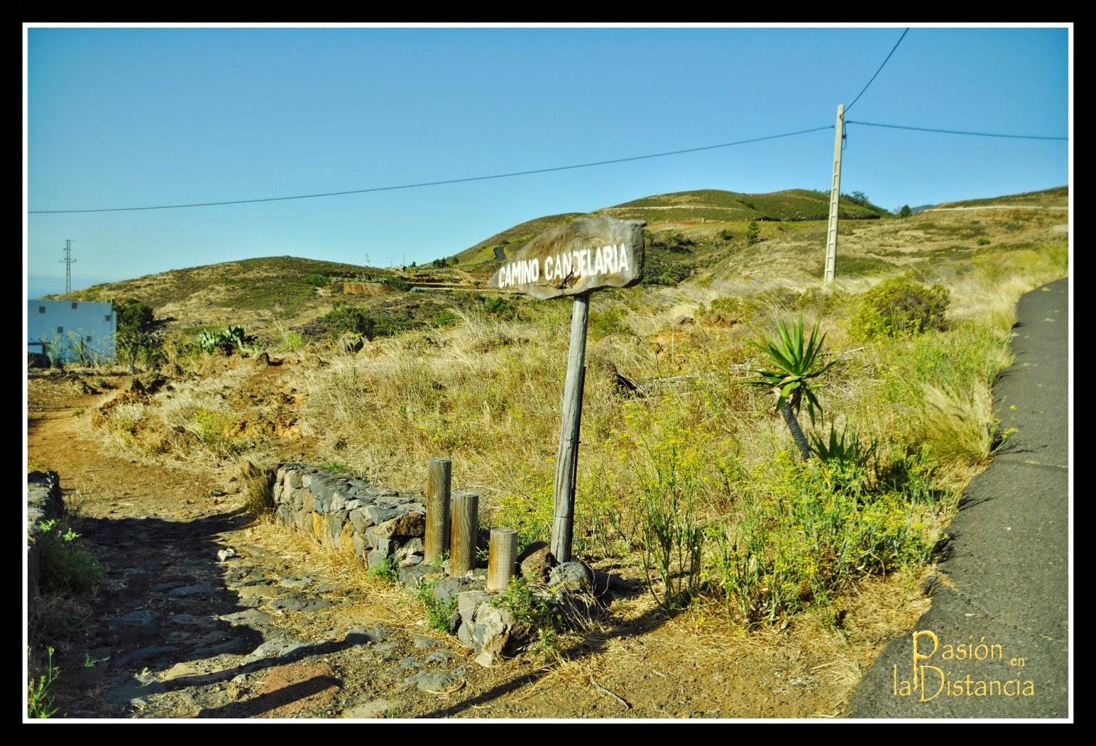 Camino_Viejo_Candelaria-Ruta_Senderismo