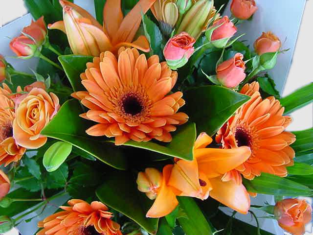 Wedding flowers ideas north shore auckland new zealand