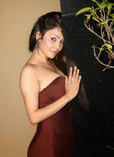 Nikita Rawal Hot Cleavage Photo