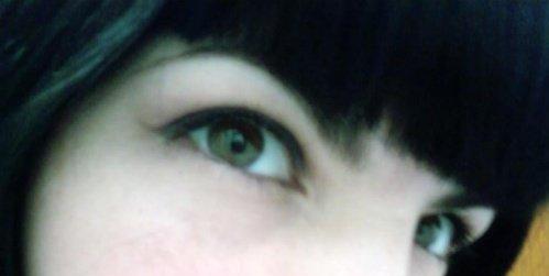 eyeliner on a cat
