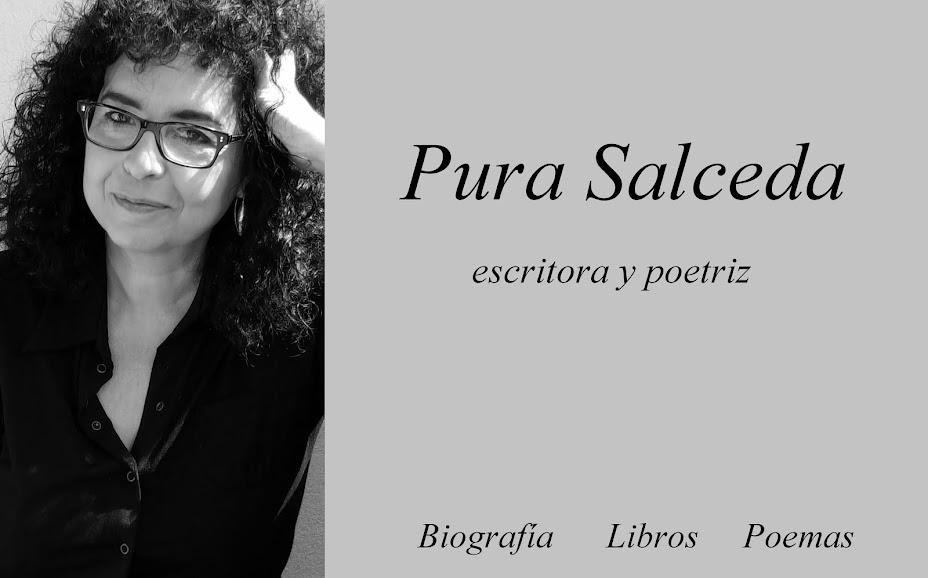Página web de Pura Salceda