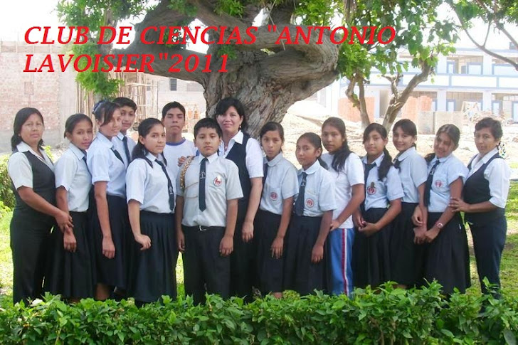 CLUB DE CIENCIAS 2011