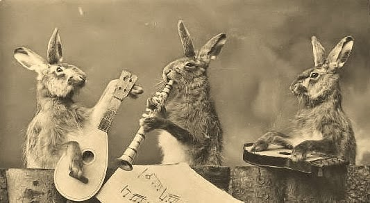 3 Rabbit Band