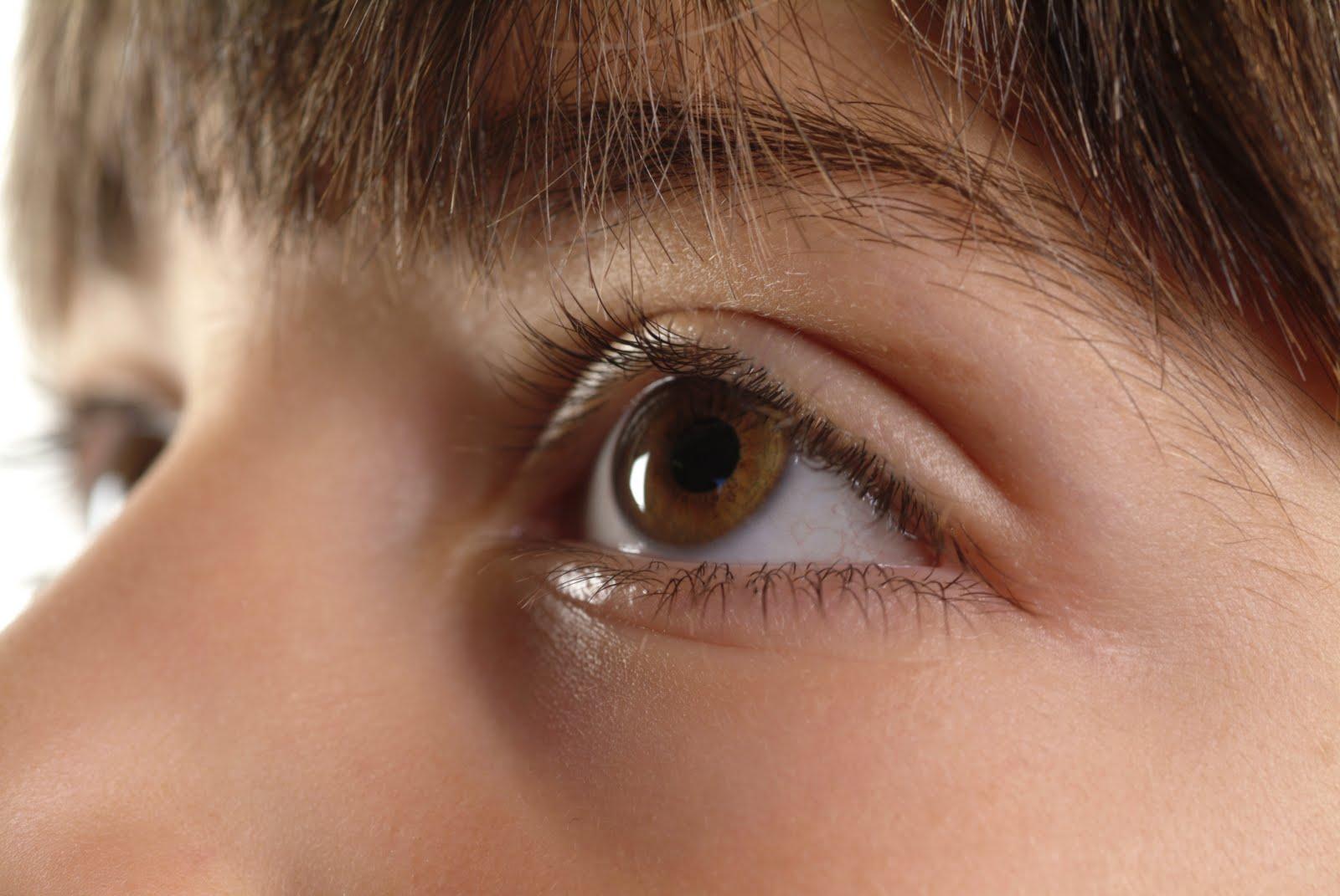Iman cosmetics iman luxury eye shadow tiger eye