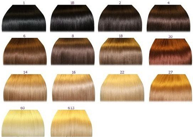 Hair color chart number 2 the wigs and hair extensions colour hd image of red hair fashion 2011 august 2011 pmusecretfo Gallery
