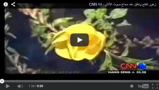 شاهد بالفيديو تقرير CNN : زهرة تسمى الأونوثارا تتفتح وتغلق على صوت الأذان ! سبحان الله