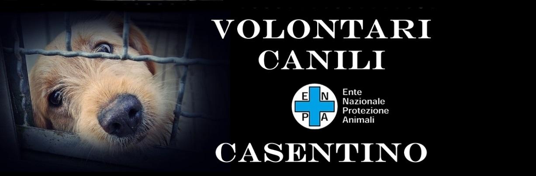 Volontari Canili Casentino