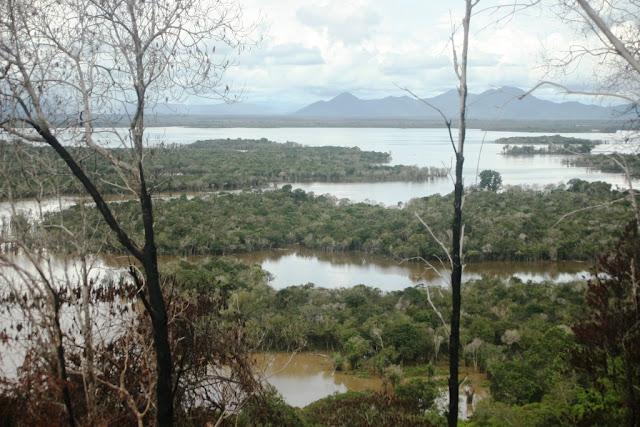Pemerintah Jerman Dukung Implementasi REDD+ di Kalimantan