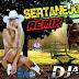 Sertanejo  Remix  2014
