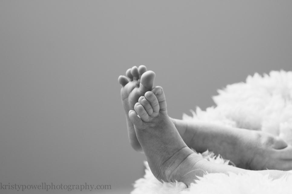 Princeton, NJ Newborn Photography