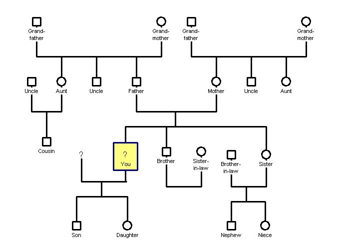 Template For My Genogram