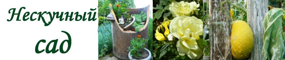 Нескучный сад