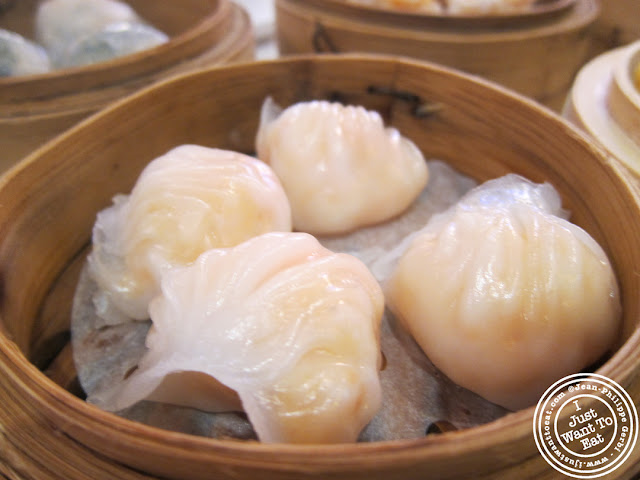 Image of Crystal shrimp dumplings at the Golden Unicorn in Chinatown NYC, New York