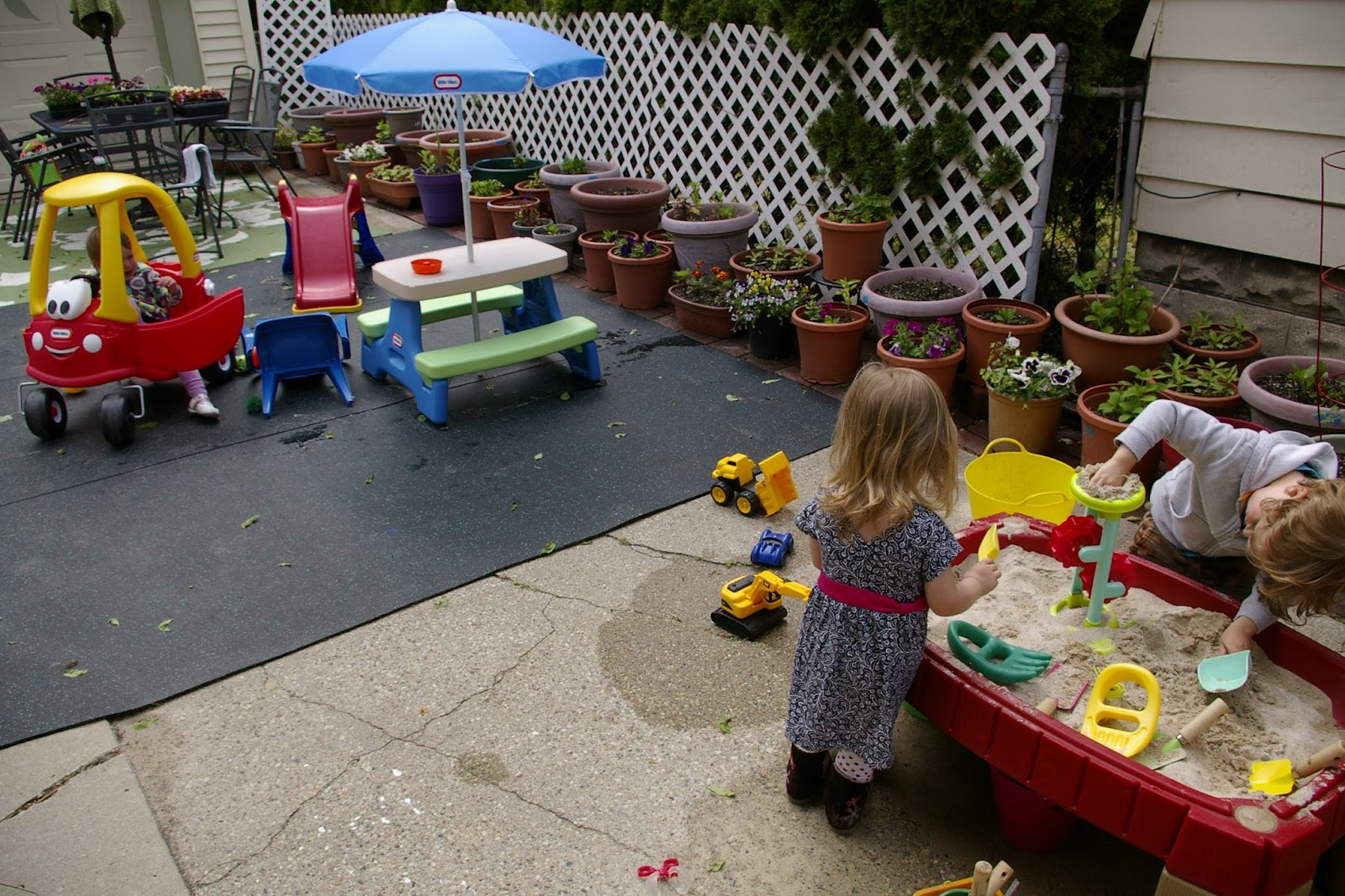 Tadpoles Pollywogs Froglets Daycare Outdoor Play Area
