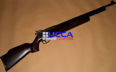 Sharp Innova Long Barrel Standard Air Rifle