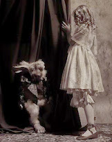 ♥ ♣ Alice Sees White Rabbit Behind Curtian!  ♣ ♥