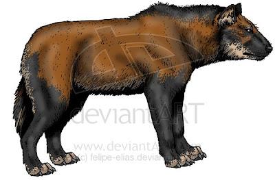 canidos fosiles de argentina Theriodictis