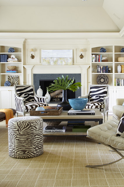 Interior Design Coral Shells And Decor