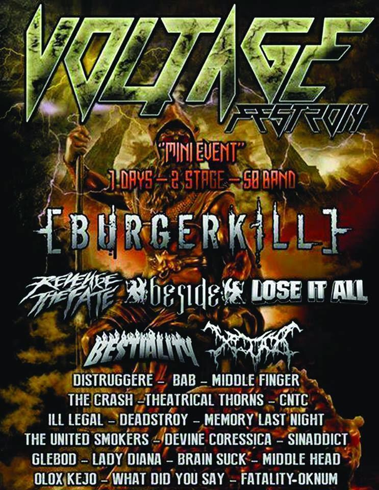 Voltage Fest 2014