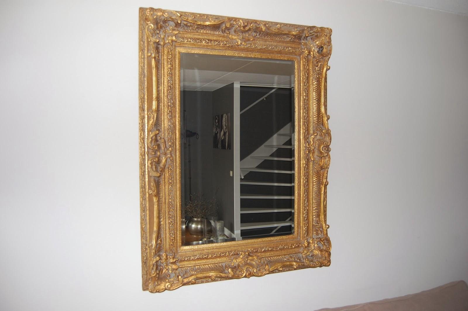 Stoer & robuust wonen: spiegel