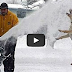 Funny Dogs And Cats Playing In The Snow - Funny Animal Compilation
