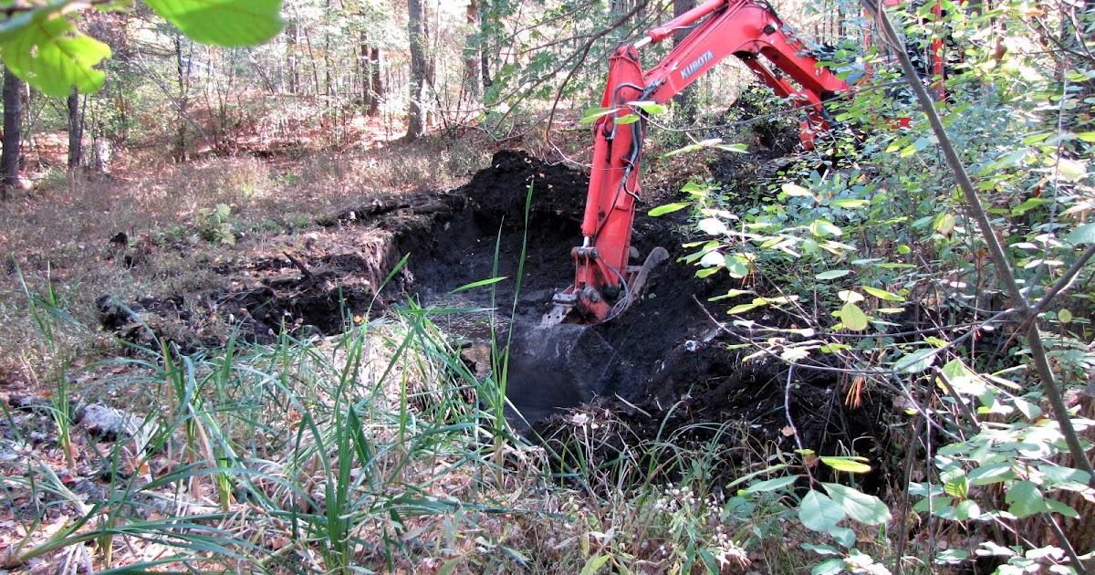 Steffan Janet Watkins 39 Blog Digging Out The Duck Pond