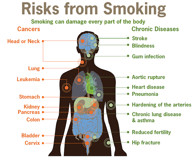 Smoking: Do You Really Know The Risks?