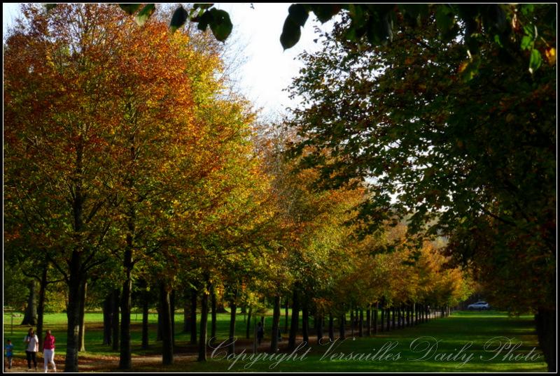 Autumn Versailles palace park