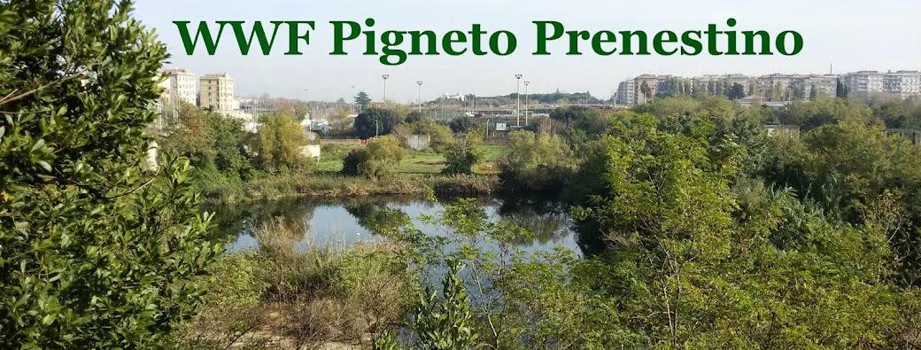 WWF Pigneto Prenestino