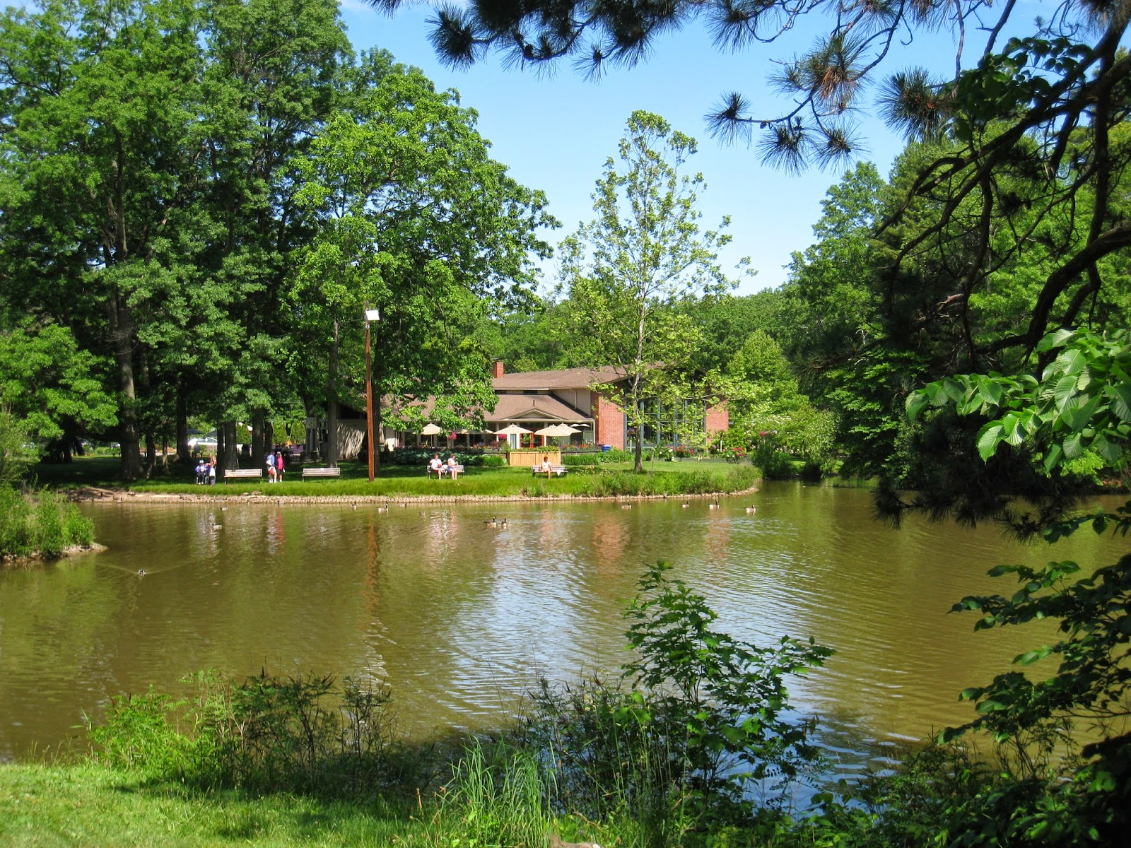 design megillah  love where you live  elizabeth park