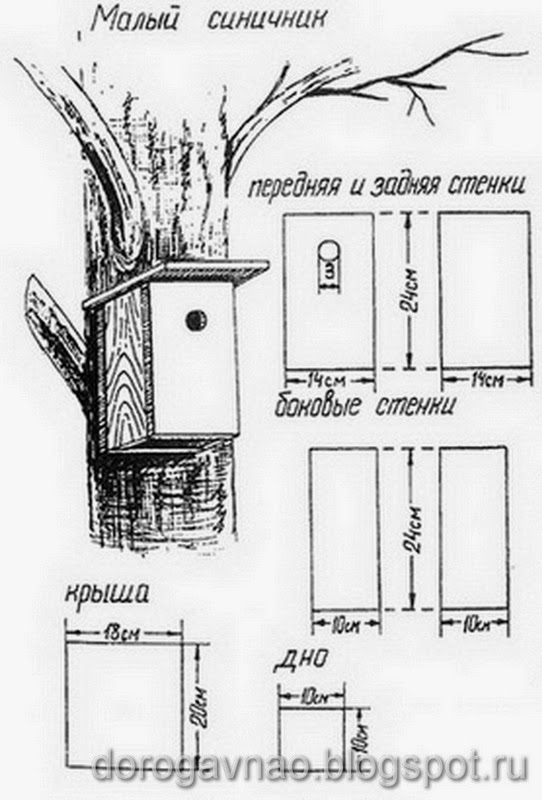Синичники своими руками чертежи