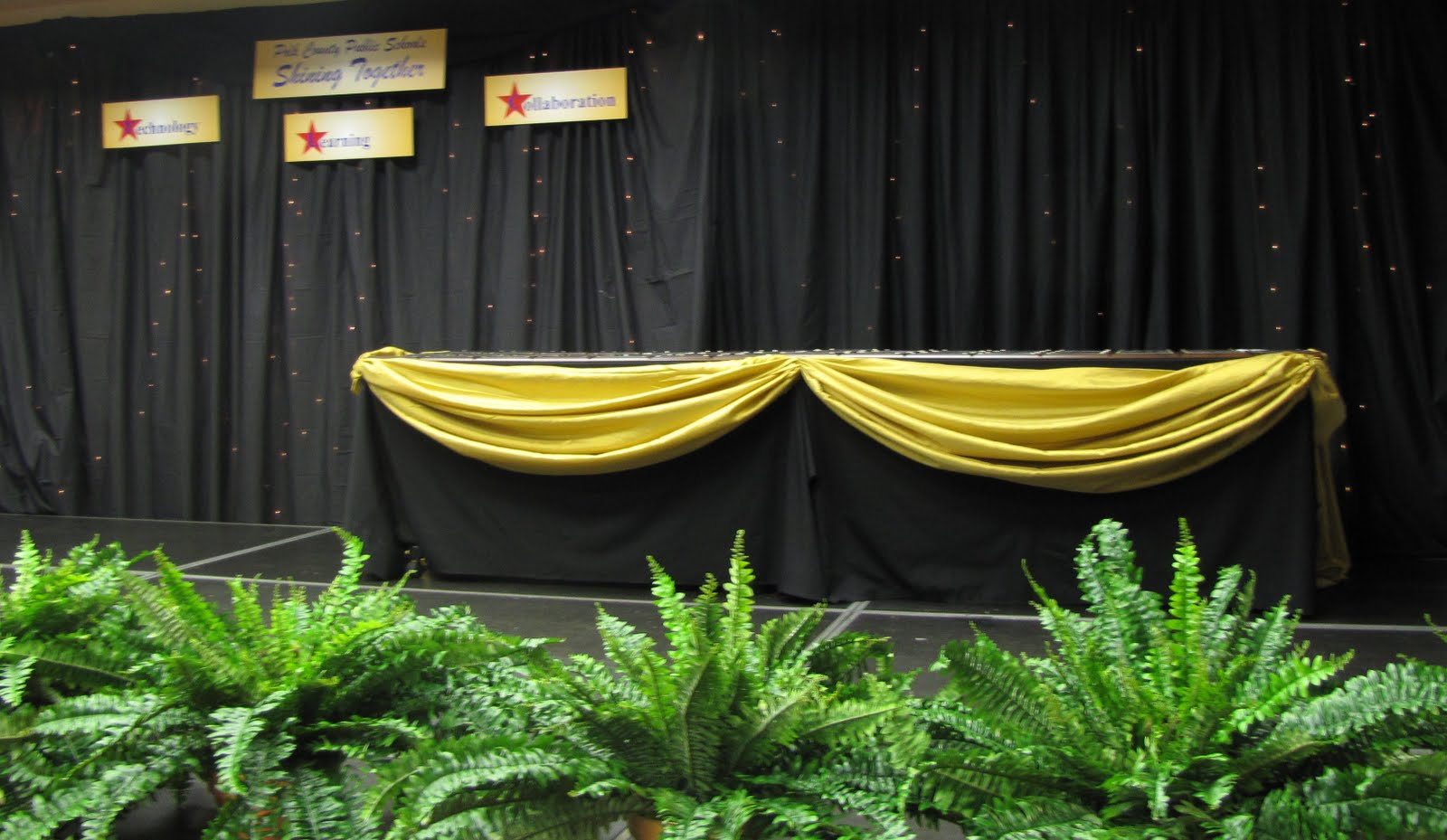 Party people event decorating company shinning star tech for Award decoration
