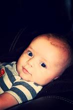 Ryder-3 months old
