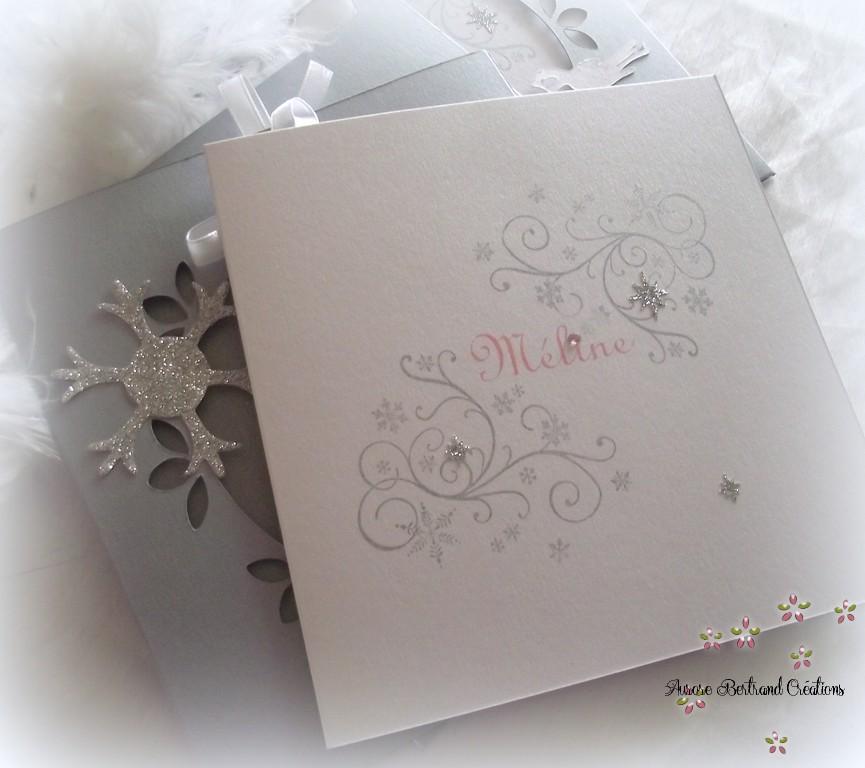 Zeste d 39 amour faire part naissance douceur d 39 hiver - Carte aurore partenaire ...