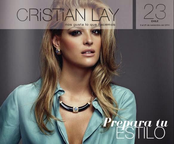 Cristian Lay Campaña 23 2014 chile