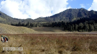 lokasi oro-oro ombo gunung semeru