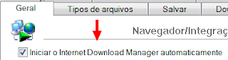 como-configurar-internet-download-manager