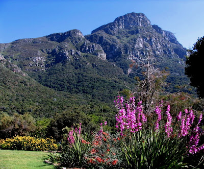 Kirstenbosch, MEI Conferences