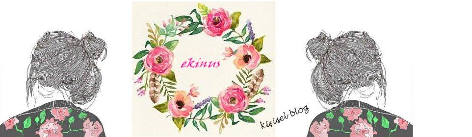 Ekinus.com | Hobi ve Yaratıcı Fikirler Blogu